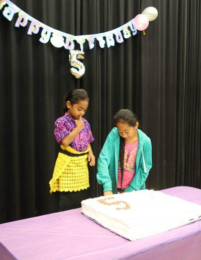 Sistema Aotearoa's 5th Birthday